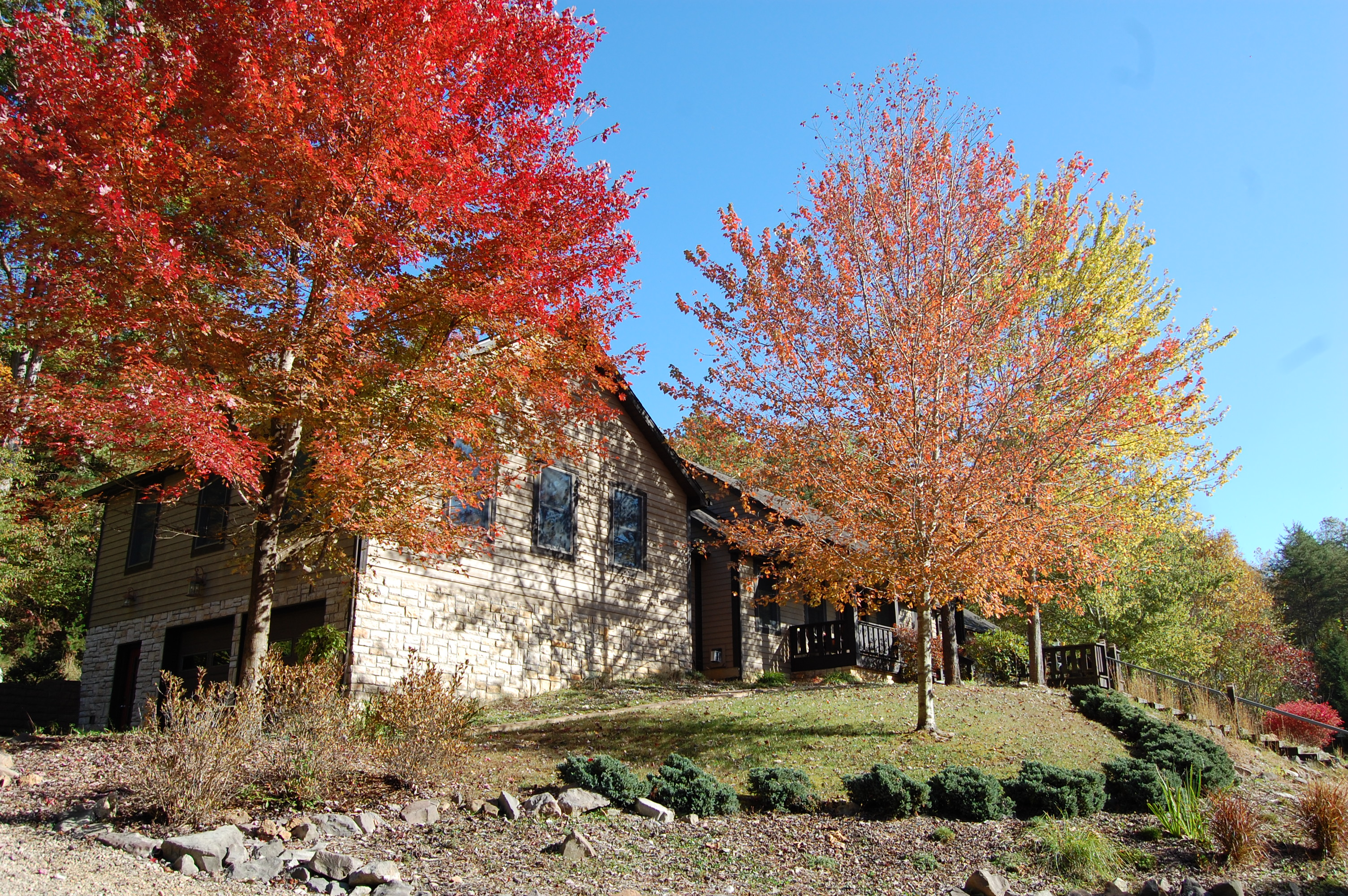 Harvest Moon Cottages - The Lodge